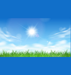 blue sky and grass background vector image