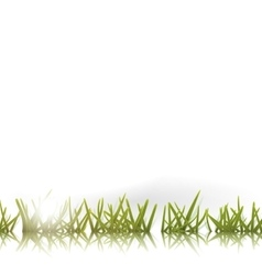 Green grass with reflection and sun isolated vector