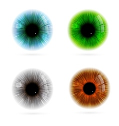 Human eye color vector
