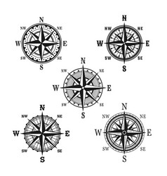 Icons of marine nautical navigation compass vector