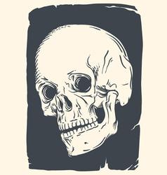 isolated skull on vintage broken paper vector image