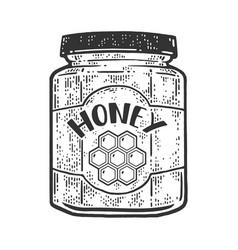 jar honey sketch vector image