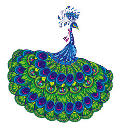 peacock drawing fantasy vector image