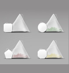 Tea pyramid bagsset isolated on grey background vector