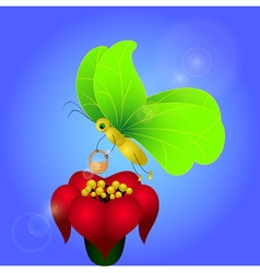 Butterfly with Brugmansia vector image vector image