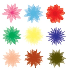 Floral collection vector image vector image