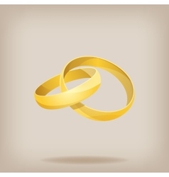 Pair of gold wedding rings vector image vector image