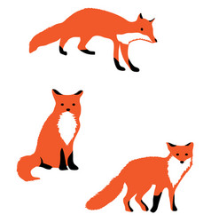fox vector image