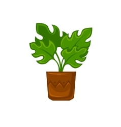 Pot plant with flower and leave vector