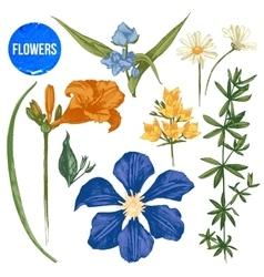Hand drawn garden flowers set vector