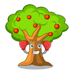 Boxing apple orchard with basket of cartoon vector