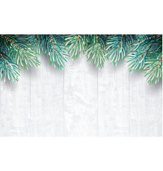 fir branches with white wooden texture vector image