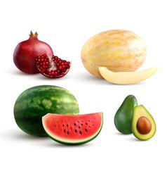 fruits realistic set vector image
