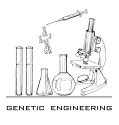 Hand drawn genetic engineering vector