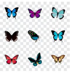 realistic papilio ulysses purple monarch common vector image