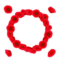 red corn poppy wreath vector image