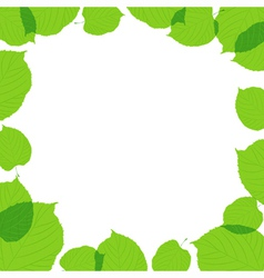 Green leaves frame on the white background vector image vector image