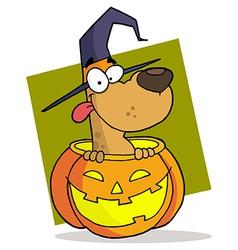 Cartoon Character Halloween Dog vector image vector image