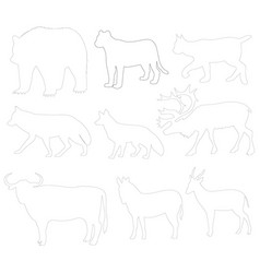Animal picture vector