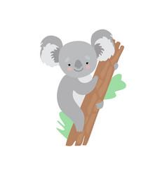 cute koala bear climbing tree funny grey animal vector image