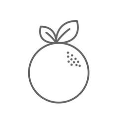 Figure delicious orange fruit icon vector