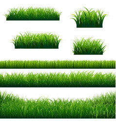 green grass borders big collection vector image