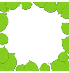Green leaves frame on the white dropping shadow vector image