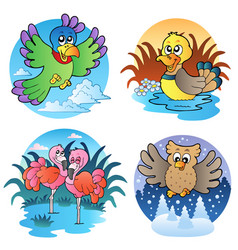 various cute birds 1 vector image