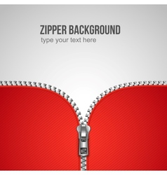 zipper background vector image