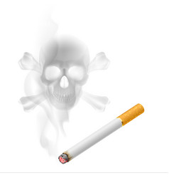human scull appears in cigarette smoke on white vector image vector image