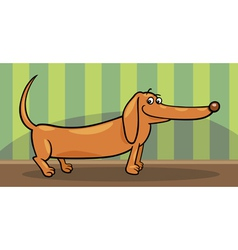 dachshund dog cartoon vector image