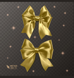 Gold realistic bows on a transparent vector