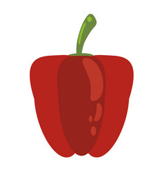 Red pepper food healthy image vector