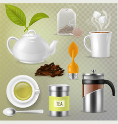 tea drink herbal beverage with dry leaves vector image
