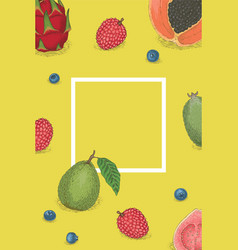 Template card with white border and fruits vector