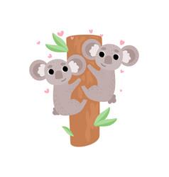 Two cute baby koala bears climbing tree lovely vector