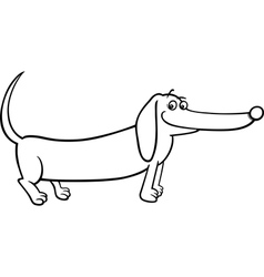 dachshund dog cartoon for coloring vector image vector image
