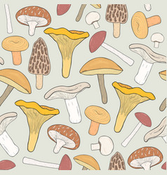 Edible mushrooms seamless pattern hand drawn vector