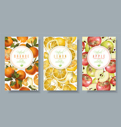 Fruit vertical banners vector