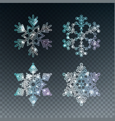 Ice crystal snowflakes vector