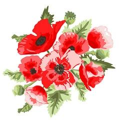 Poppy floral bouquet vector