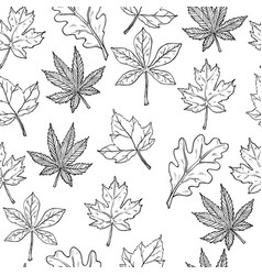 sketch with autumn leaves seamless pattern vector image