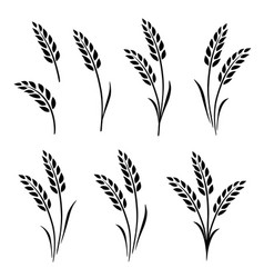 Black abstract wheat ears hand drawn set vector