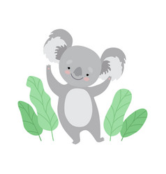 cute cheerful koala bear standing on two legs vector image