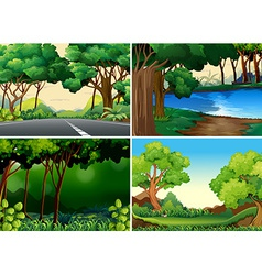 Forests vector image