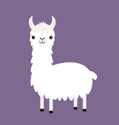 Llama alpaca cute cartoon funny kawaii baby vector