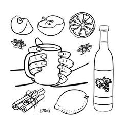 Mulled wine spices and fruits christmas vector
