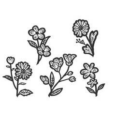 Set isolated wildflowers sketch scratch board vector