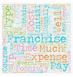 How Much Does A Franchise Cost text background vector image