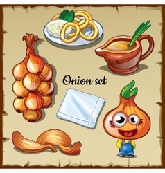 Onion set onion in different forms vector